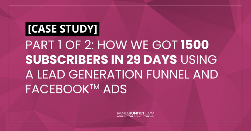 [CASE STUDY] Part 1: How We Got 1500 New Subscribers In 29 Days